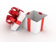 Gift  open white box