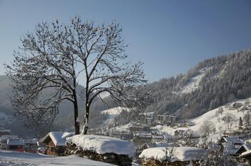 French Alps XVI