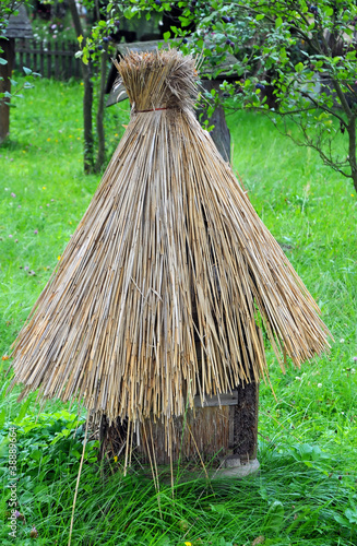 old type of wooden beehive with straw roof in Poland