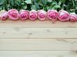 Reihe mit Rosen