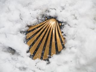 concha del camino de santiago nevada