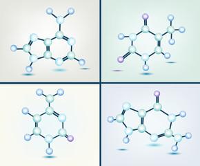 basi azotate - adenina, timina, guanina e citosina