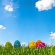 Ostergras vor Himmelblau mit Ostereiern