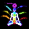 System of human chakras