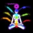 System of human chakras