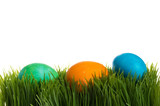 Three dyed Easter eggs in the grass poster