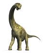 Camarasaurus Dinosaur 2 - 38929214