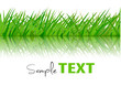Background with green grass. Vector.