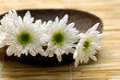 Wooden bowl of white chrysanthemums on woven mat