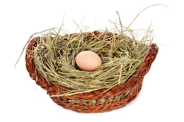 Egg in a basket isolated