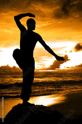 Martial Artist Silhouette with Orange Sunset