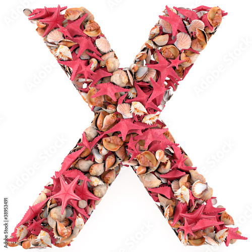 X letter from seashells and starfish.