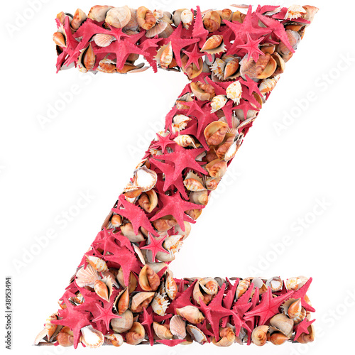 Z letter from seashells and starfish.