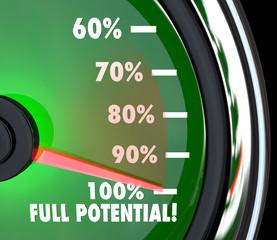Reaching Full Potential Speedometer Tracking Goal