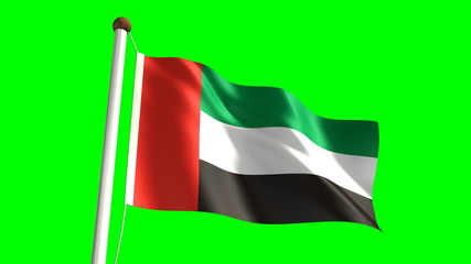 United Arab Emirates flag video (seamless & green screen)