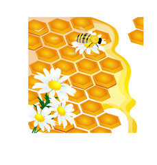 design of honeycomb and flowers