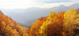 Balkan Mountains in the fall poster