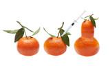 Genetic modification  makes bizarre fruits poster