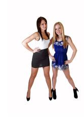 Two pretty girls.