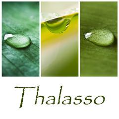 composition thalasso