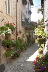 Spello, old street