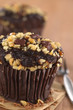 Chocolate-walnut muffins (Selective Focus)