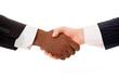 Multiracial business handshake on white background