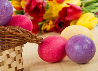 Easter colored eggs with basket and tulips