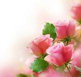 Rose - 38992454