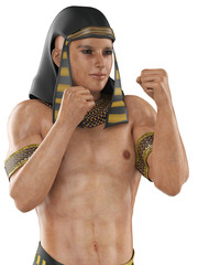 Pharaoh fighter