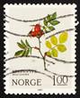 Postage stamp Norway 1980 Dog Rose, Mountain Flower