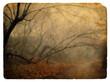 Foggy landscape. Old postcard