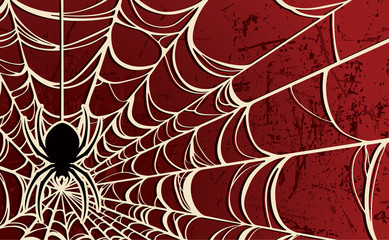 Spider Background—Red