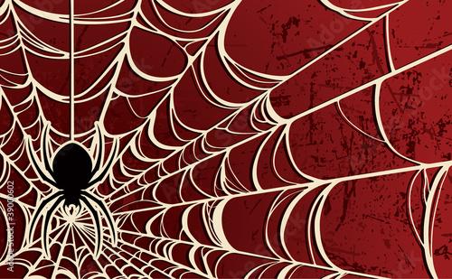 Spider Background—Red - 39000602