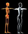 Scheletro e donna raggi X schiena