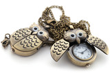 Watch the owl, the long chain of bronze