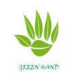 Logo green hand # Vector