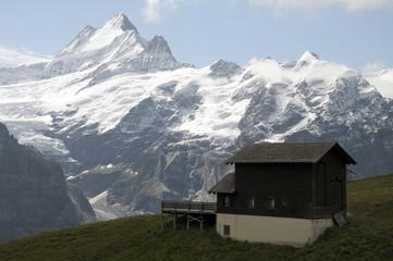 Huts and Schreckhorn above Grindelwald