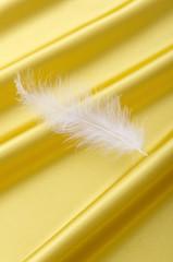 ゴールドのサテンドレープと白い羽根