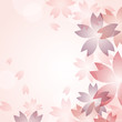 cherry blossom flowers background