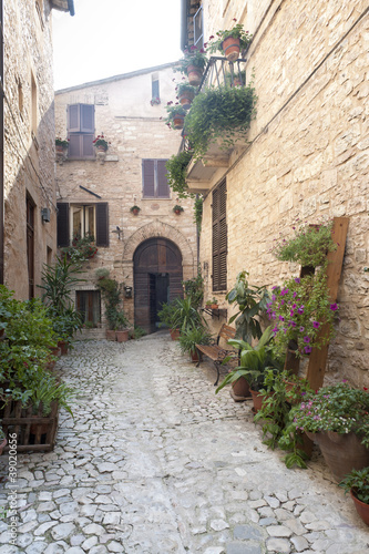 Spello, old street