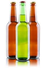 Beer bottles isolated on white background