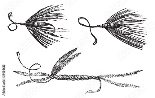 Fig. 49. Palmer. Fig. 50. Ant wing in August. Fig. 51. little Pe