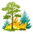 wildfire disaster with burning forest tree and firtrees vector