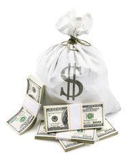 full sack with dollars money packed in bundles isolated on