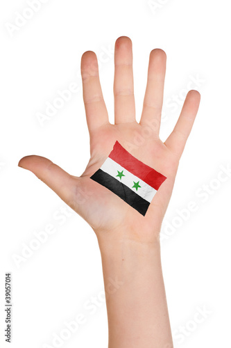 The Syria flag painted on the palm. Poster