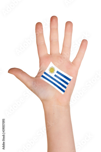 The Uruguayan flag painted on the palm. Poster