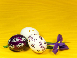 Three easter eggs and iris on yellow