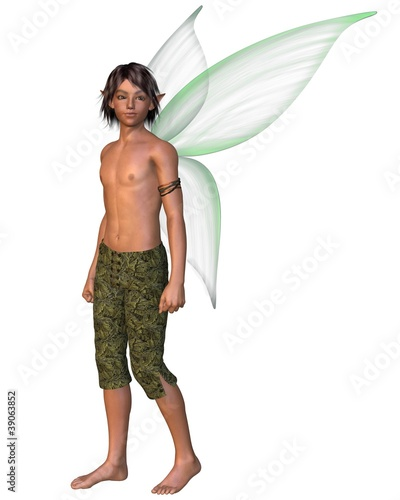 Fairy Boy with green gossamer wings