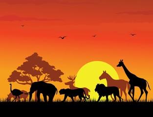 58 animal silhouette